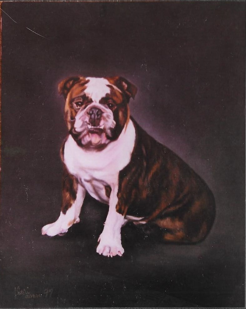 Dog Bulldog on Oil
