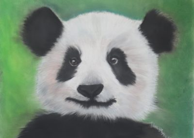 Panda in Chalk